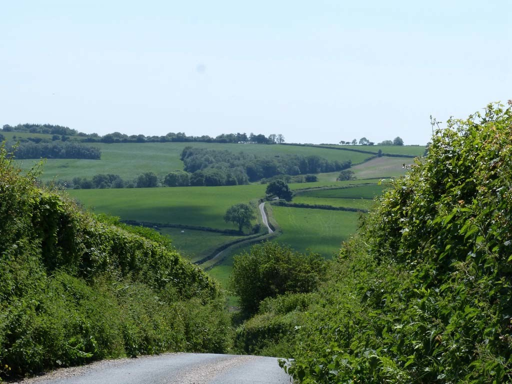 View of the lane to Higher Kingcombe